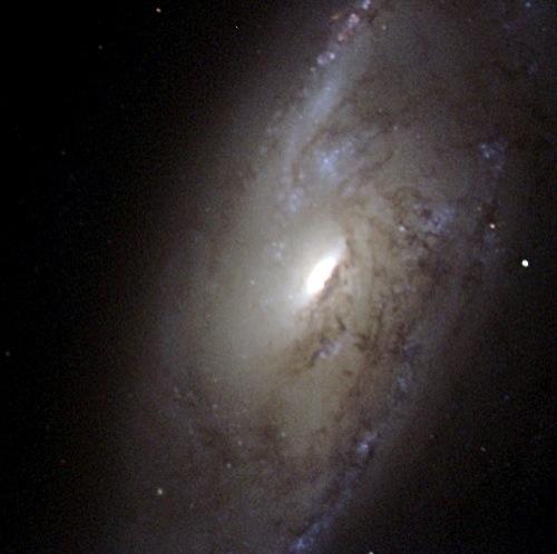 M106 : Spiral Galaxy