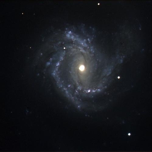 M61 : Spiral Galaxy