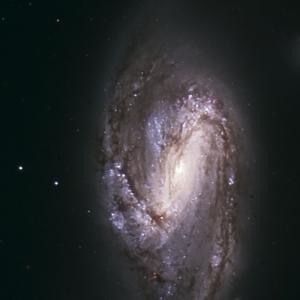 M66 : Member of the Leo Triplett